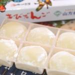 山方永寿堂の「岡山名物きびだんご」10個入り