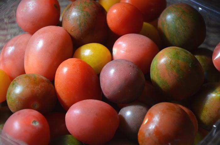 見たこともないミニトマト!楽しい!