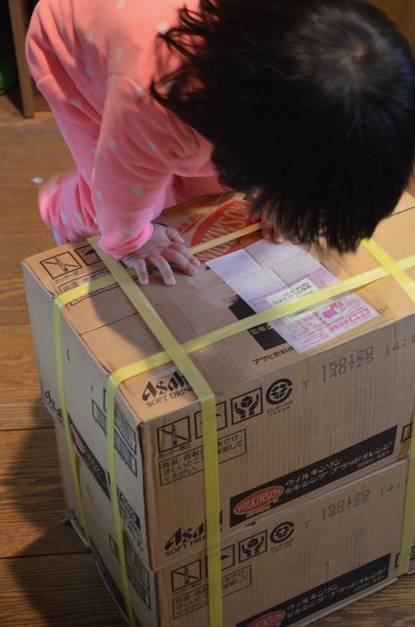 2箱まとめて届きます。全部で48本!