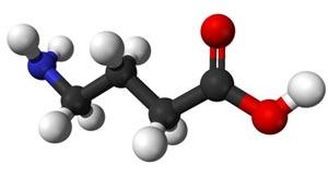 ギャバ(γ-アミノ酪酸)