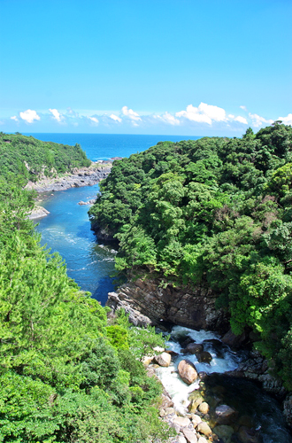 屋久島のゆたかな自然