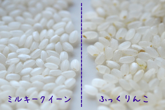 北海道米ふっくりんこと比べてみました