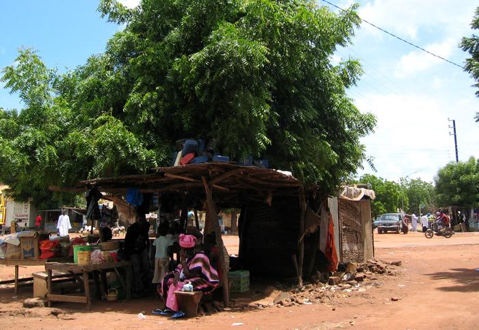 西アフリカのセネガル